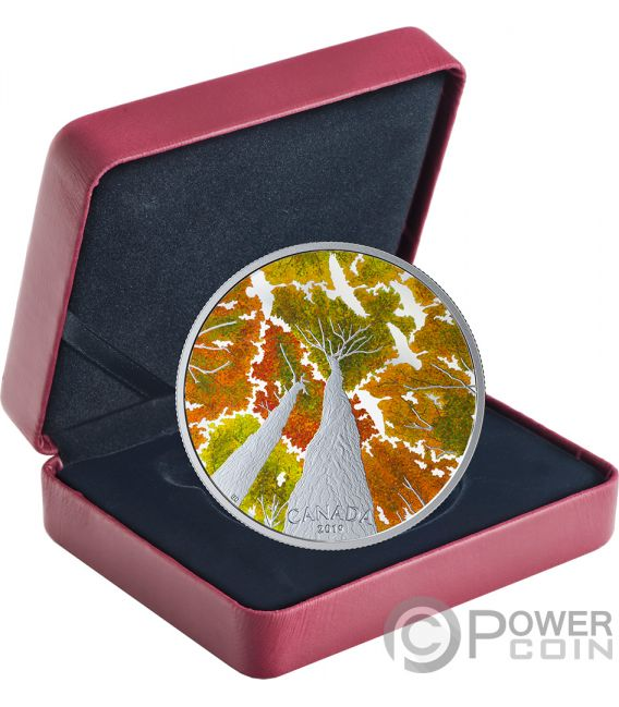 GOOSE Maple Leaf Canadian Canopy 2 Oz Silver Coin 30$ Canada 2019
