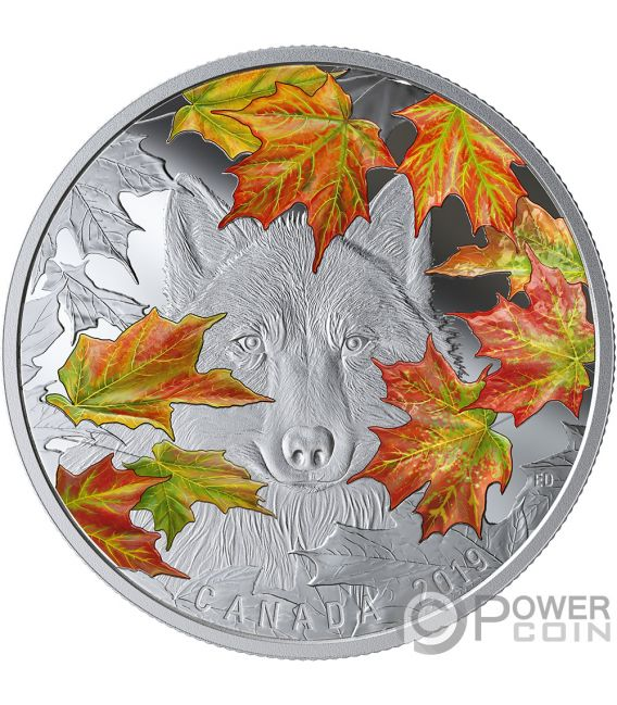 WILY WOLF Maple Leaves 2 Oz Silver Coin 30$ Canada 2019