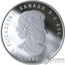 AQUARIUS Acuario Zodiac Swarovski Crystal Moneda Plata 5$ Canada 2019
