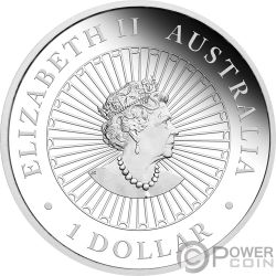 YEAR OF THE PIG Australian Opal 1 Oz Silver Coin 1$ Australia 2019