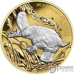 PLATYPUS Ornitorinco Australia at Night 1 Oz Moneta Oro 100$ Niue 2019