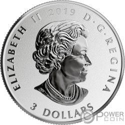 NIAGARA FALLS Fun and Festivities Серебро Монета 3$ Канада 2019