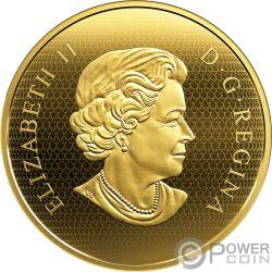 GOLDEN EAGLE Aguila Birds of Prey 5 Oz Moneda Oro 500$ Canada 2019