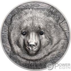 MONGOLIAN GOBI BEAR Wildlife Protection 1 Oz Серебро Монета 500 Тугриков Монголия 2019
