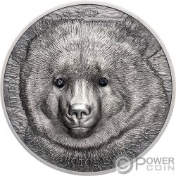MONGOLIAN GOBI BEAR Wildlife Protection 1 Oz Silver Coin 500 Togrog Mongolia 2019