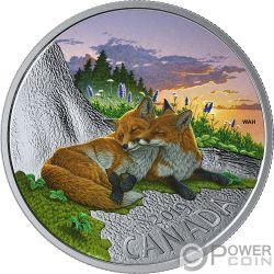 FOX Volpe Fauna 1 Oz Moneta Argento 20$ Canada 2019