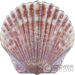 SEASHELL Concha Colorized Castaway Moneda Plata 1$ Fiji 2019
