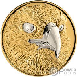 WEDGE TAILED EAGLE Aguila Wildlife Up Close 1 Oz Moneda Oro 100$ Niue 2019
