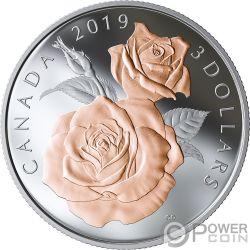 ROSE BLOSSOMS Rosa Knospen Queen Elizabeth Silber Münze 3$ Canada 2019