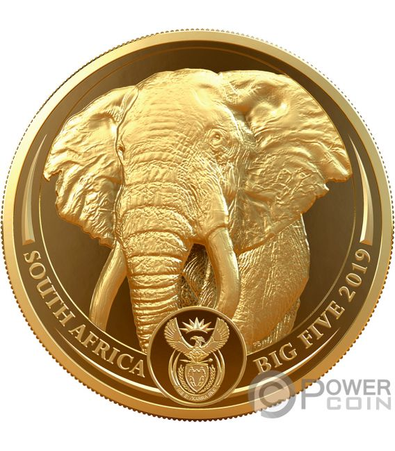 ELEPHANT Big Five 1 Oz Gold Coin 50 Rand South Africa 2019