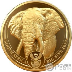 ELEPHANT Elefante Big Five 1 Oz Moneda Oro 50 Rand South Africa 2019