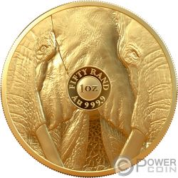 ELEPHANT Elefant Big Five 1 Oz Gold Münze 50 Rand South Africa 2019