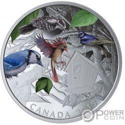 BIRDS IN THE BACKYARD Pajaros 2 Oz Moneda Plata 30$ Canada 2019
