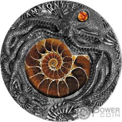 AMMONITE Fossil Amber 2 Oz Silver Coin 5$ Niue 2019