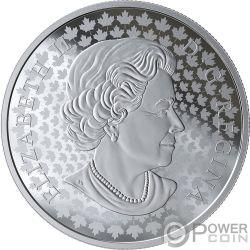 MOUNT RUNDLE Photo Peter McKinnon 2 Oz Silver Coin 30$ Canada 2019