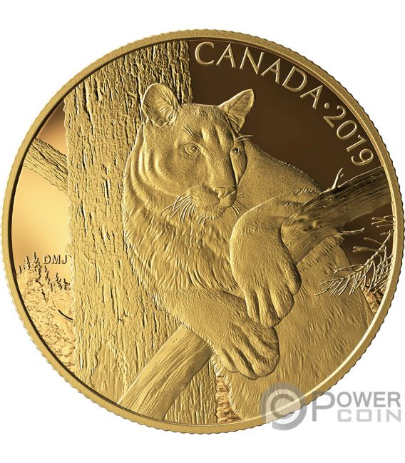 COUGAR Canadian Wildlife Portraits 1 Oz Gold Coin 350$ Canada 2019