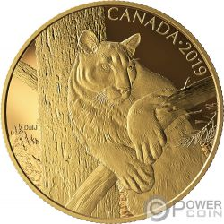 COUGAR Puma Canadian Wildlife Portraits 1 Oz Moneda Oro 350$ Canada 2019