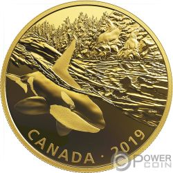 ORCA AND SEA LIONS Golden Reflections 2 Oz Silver Coin 30$ Canada 2019