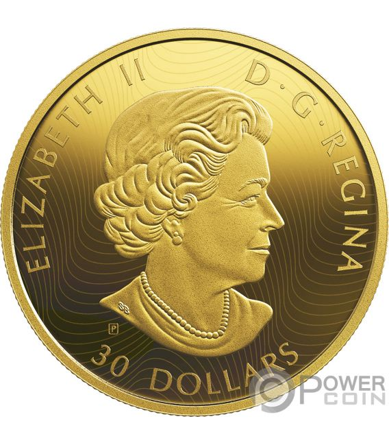 ORCA AND SEA LIONS Golden Reflections 2 Oz Silver Coin 30$ Canada 2019