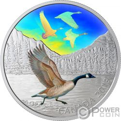 CANADA GEESE Majestic Birds in Motion 2 Oz Moneda Plata 30$ Canada 2019