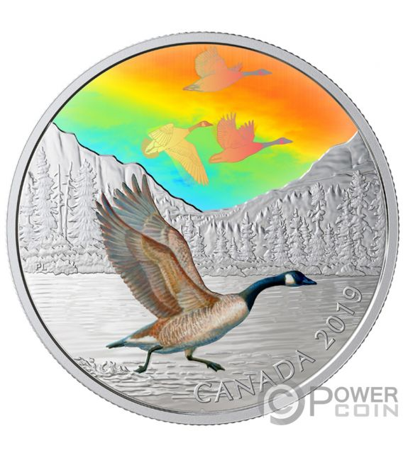 CANADA GEESE Majestic Birds in Motion 2 Oz Silver Coin 30$ Canada 2019