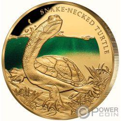 SNAKE NECKED TURTLE Tartaruga Collo Serpente Remarkable Reptiles 1 Oz Moneta Oro 100$ Niue 2020