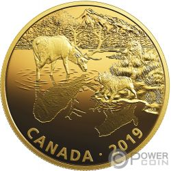 WOLVES AND ELK Lupi Alce Golden Reflections 2 Oz Moneta Argento 30$ Canada 2019