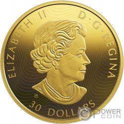 WOLVES AND ELK Волки Golden Reflections 2 Oz Монета Серебро 30$ Канада 2019