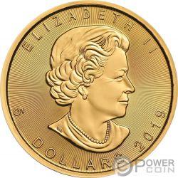BEJEWELED FROG Rana Ovni Hoja Arce Maple Leaf 1 Oz Moneda Plata 5$ Canada 2019