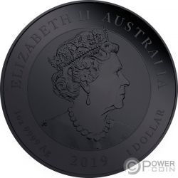 BURNING DOUBLE DRAGON Zwei Drachen 1 Oz Silber Münze 2$ Niue 2018