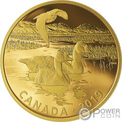 SNOWY OWL AND FRONTED GEESE Buho Oca Golden Reflections 2 Oz Moneda Plata 30$ Canada 2019