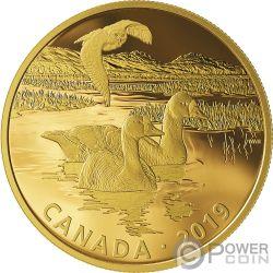 SNOWY OWL AND FRONTED GEESE Gufo Oca Golden Reflections 2 Oz Moneta Argento 30$ Canada 2019