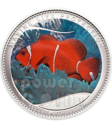PESCE ANEMONE Pagliaccio Protezione Vita Marina Moneta Argento 5$ Palau 2011