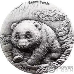 2017 $50 Canada 10 Oz Silver Grizzly BU Coin .999 Silver