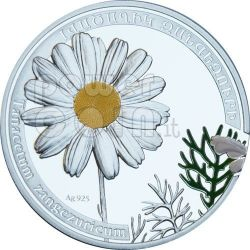 DAISY CHAMOMILE Camomile Beauty Of Flowers Silber Münze 1000 Dram Armenia 2010