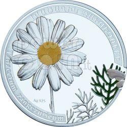 DAISY CHAMOMILE Camomile Beauty Of Flowers Silver Coin 1000 Dram Armenia 2010