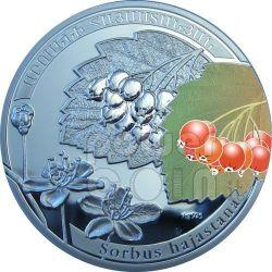 ROWAN SORBUS Beauty Of Flowers Moneda Plata 1000 Dram Armenia 2011
