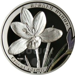 CROCUS Beauty Of Flowers Moneda Plata 1000 Dram Armenia 2011