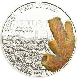 CORALLO APLYSINA FISTULARIS Coral Protection Moneta Argento 1$ Tuvalu 2011