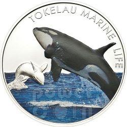 ORCA ASSASSINA Vita Marina Marine Life Moneta Argento 5$ Tokelau 2012
