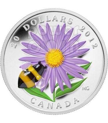 ASTER BUMBLE BEE Venetian Glass Murano Silver Coin 20$ Canada 2012