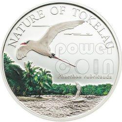 NATURE OF TOKELAU Redtailed Tropicbird Silver Coin 5$ Tokelau 2012