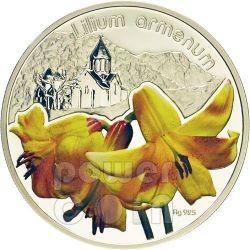 GIGLIO ARMENO Lilium Armenum Moneta Argento 1$ Niue 2012
