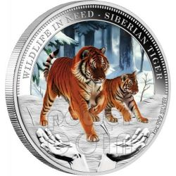 SIBERIAN TIGER Wildlife In Need Silver Coin 1$ Tuvalu 2012