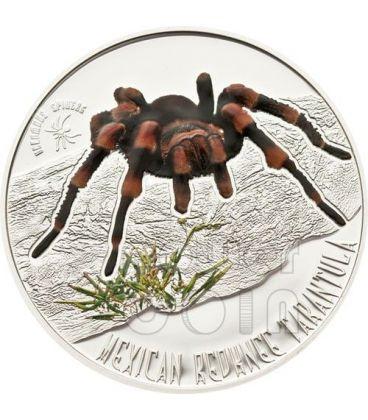 MEXICAN REDKNEE TARANTULA Venomous Spiders Silver Coin 1$ Niue 2012