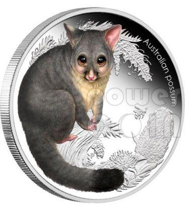 POSSUM Bush Babies II Moneta Argento 50c Australia 2013