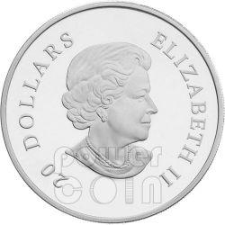 HOLIDAY SNOWSTORM Snowflake Moneda Plata Swarovski 20$ Canada 2012