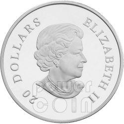 SNOWFLAKE CRYSTAL Moneda Plata Swarovski 20$ Canada 2012