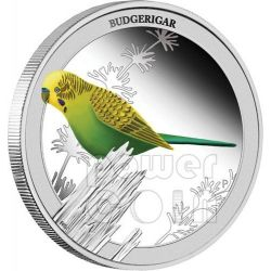 BUDGERIGAR Birds of Australia Silver Proof Coin 50c Australia 2013