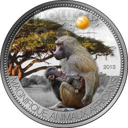 PAVIAN OLIVE BABOON Beautiful African Wildlife Silber Münze 1000 Francs Niger 2013